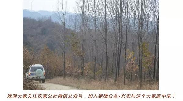 湖北省随州市曾都区淮河镇桐桥畈村闲置农房
