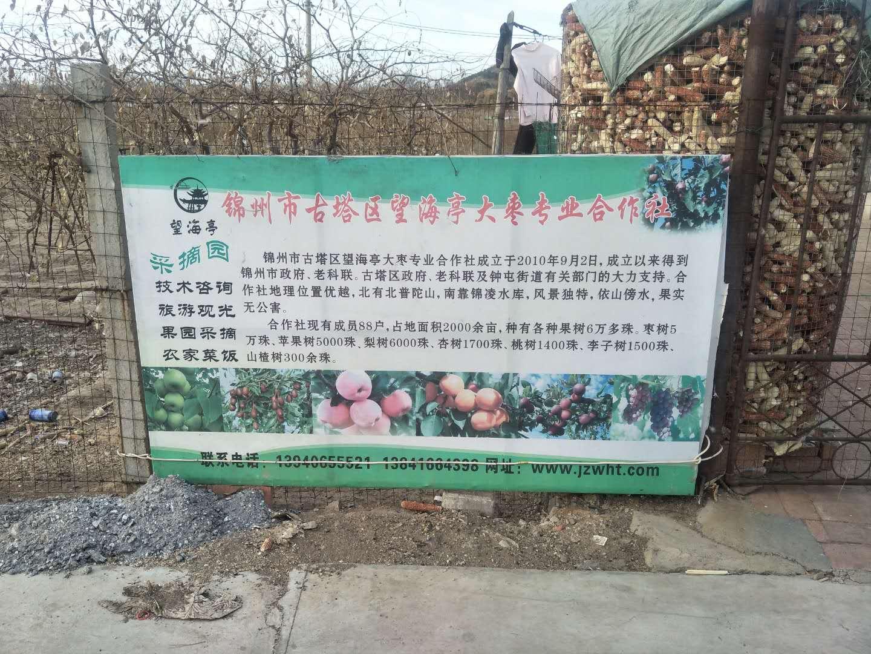 锦州市罗台子村山保屯闲置农房