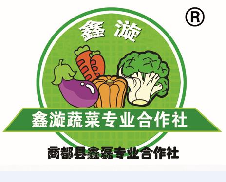 乌兰察布市商都县鑫磊蔬菜专业合作社