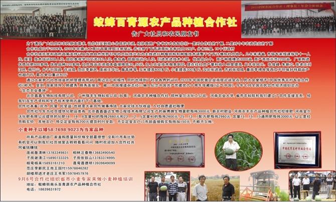 驻马店驿城区百青源农副产品种植农民专业合作社