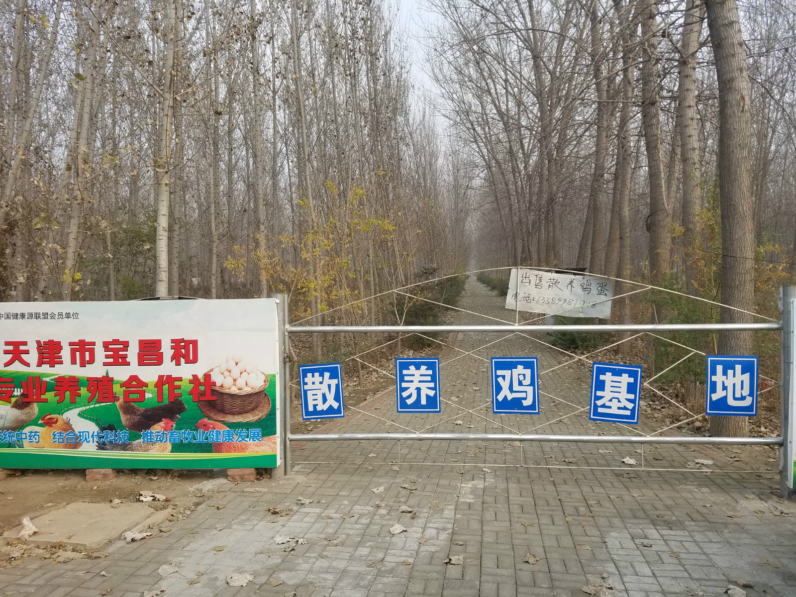 天津市宝坻区宝昌和养鸡专业合作社