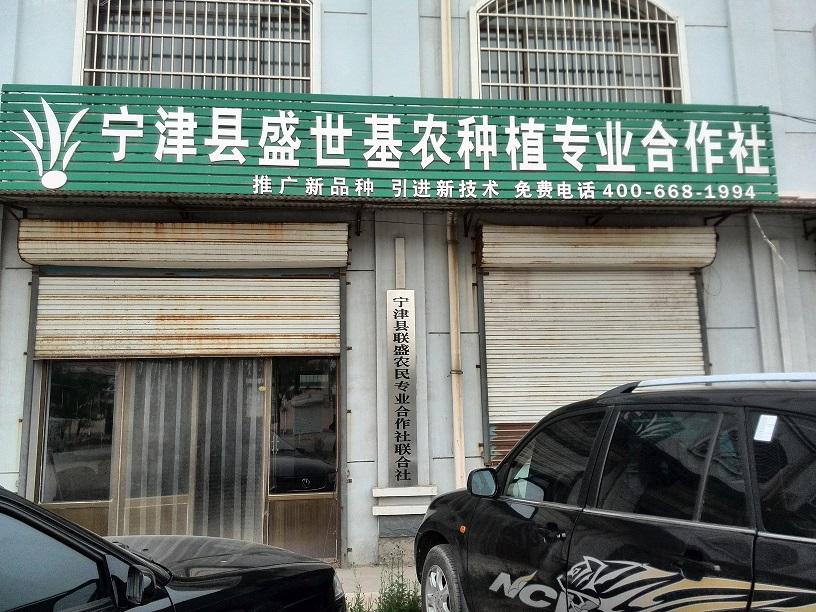 山东省宁津县盛世基农种植专业合作社