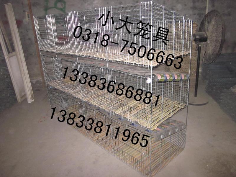 兔子笼鸽子笼宠物笼运输笼狐狸笼鸡笼子兔笼子好鸽笼养殖笼繁殖笼