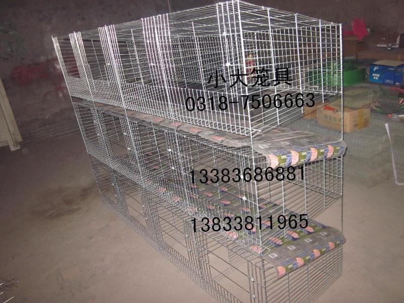兔子笼鸡笼鸽子笼狐狸笼鹌鹑笼宠物笼运输笼鹧鸪笼貉子笼鸽笼兔笼