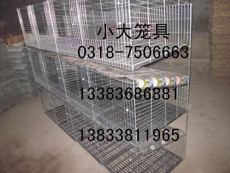 好鸽笼兔子笼狐狸笼鹌鹑笼鸡笼鸽子笼保姆笼仓储笼宠物笼鸽笼兔笼