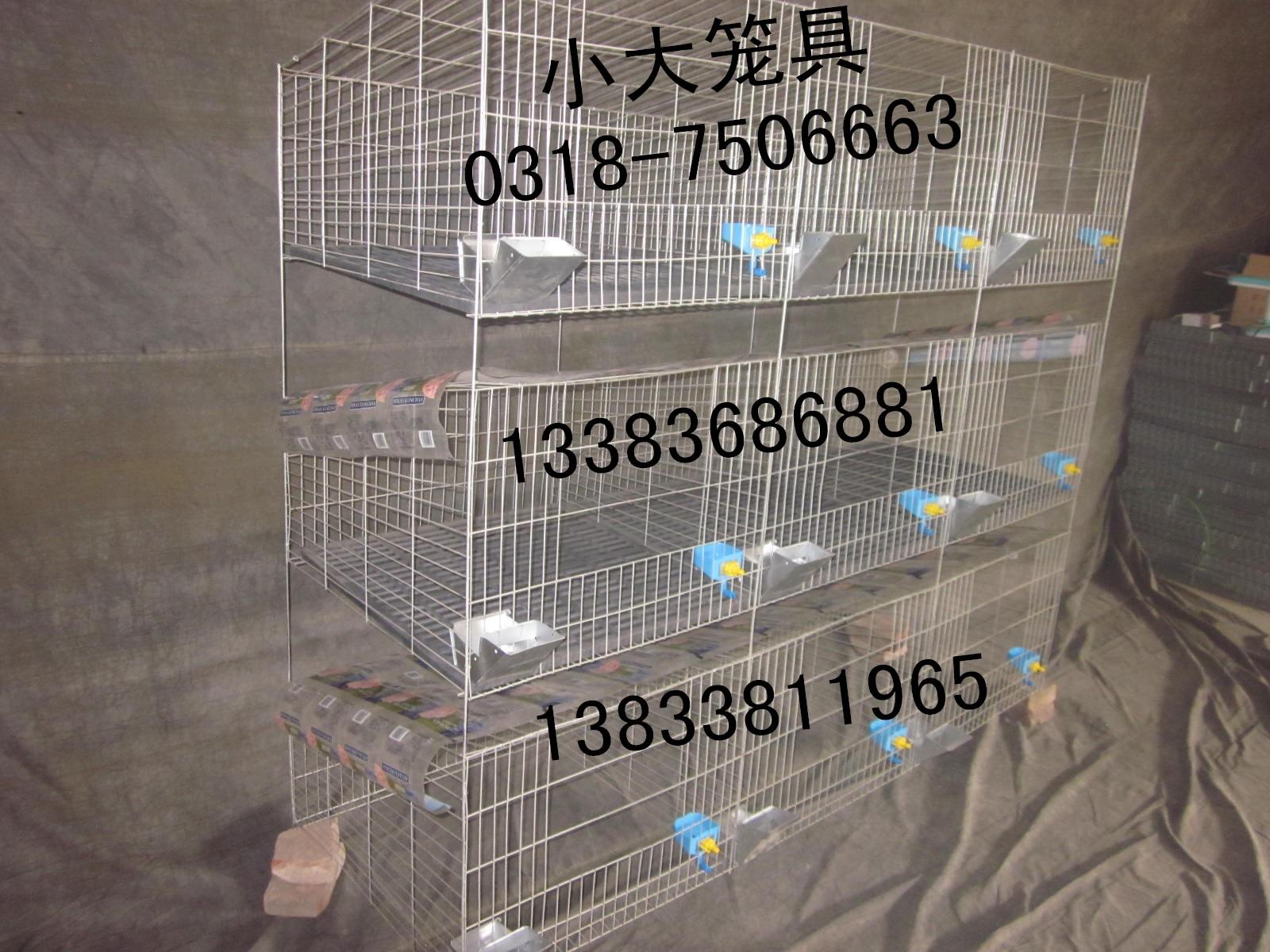 售蛋鸡笼 雏鸡笼 蛋鸽笼 肉鸽笼 母兔笼 商品兔笼 仔母兔笼 鹌鹑笼 鹧鸪笼